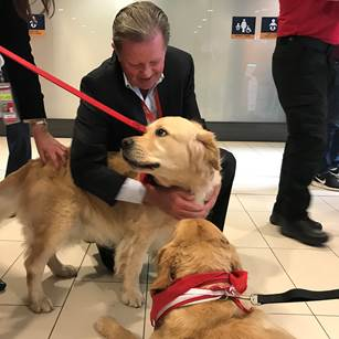 therapy dogs Ottawa International Airport